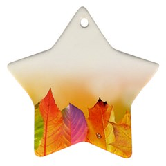 Autumn Leaves Colorful Fall Foliage Star Ornament (two Sides) by BangZart