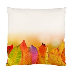 Autumn Leaves Colorful Fall Foliage Standard Cushion Case (one Side) by BangZart