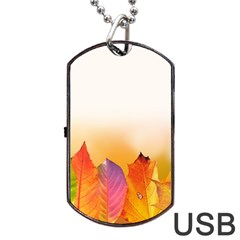 Autumn Leaves Colorful Fall Foliage Dog Tag Usb Flash (two Sides) by BangZart