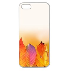 Autumn Leaves Colorful Fall Foliage Apple Seamless Iphone 5 Case (clear) by BangZart