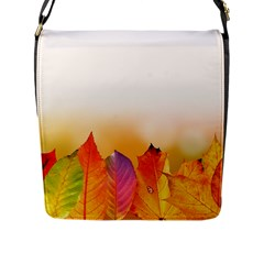 Autumn Leaves Colorful Fall Foliage Flap Messenger Bag (l)  by BangZart