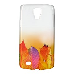 Autumn Leaves Colorful Fall Foliage Galaxy S4 Active by BangZart
