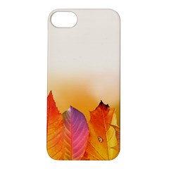 Autumn Leaves Colorful Fall Foliage Apple Iphone 5s/ Se Hardshell Case by BangZart