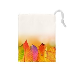 Autumn Leaves Colorful Fall Foliage Drawstring Pouches (medium)  by BangZart