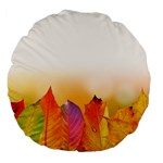 Autumn Leaves Colorful Fall Foliage Large 18  Premium Flano Round Cushions Front