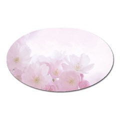 Pink Blossom Bloom Spring Romantic Oval Magnet by BangZart