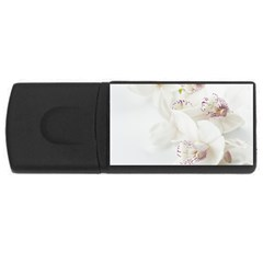 Orchids Flowers White Background Usb Flash Drive Rectangular (4 Gb) by BangZart