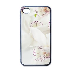 Orchids Flowers White Background Apple Iphone 4 Case (black) by BangZart