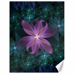 Pink And Turquoise Wedding Cremon Fractal Flowers Canvas 12  X 16   by jayaprime