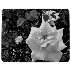 White Rose Black Back Ground Greenery ! Jigsaw Puzzle Photo Stand (rectangular) by CreatedByMeVictoriaB
