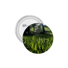 Green Grass Field 1 75  Buttons by paulaoliveiradesign