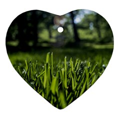 Green Grass Field Heart Ornament (two Sides) by paulaoliveiradesign