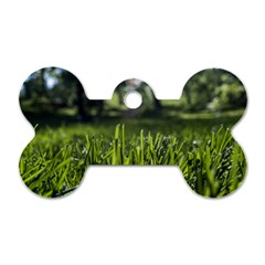 Green Grass Field Dog Tag Bone (two Sides)