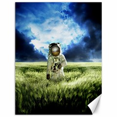 Astronaut Canvas 12  X 16   by BangZart