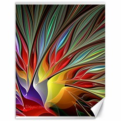 Fractal Bird Of Paradise Canvas 18  X 24