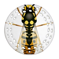Wasp Round Filigree Ornament (two Sides) by BangZart