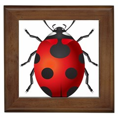 Ladybug Insects Framed Tiles