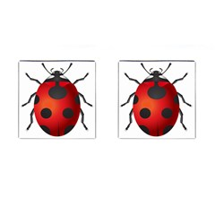 Ladybug Insects Cufflinks (square) by BangZart