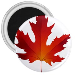 Autumn Maple Leaf Clip Art 3  Magnets by BangZart