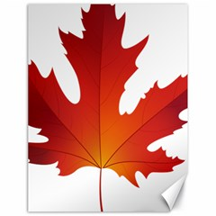 Autumn Maple Leaf Clip Art Canvas 18  X 24
