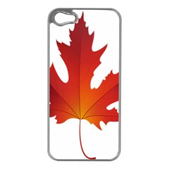 Autumn Maple Leaf Clip Art Apple Iphone 5 Case (silver) by BangZart