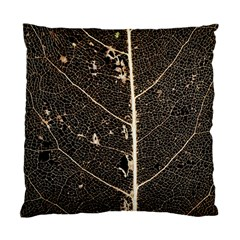 Vein Skeleton Of Leaf Standard Cushion Case (two Sides) by BangZart