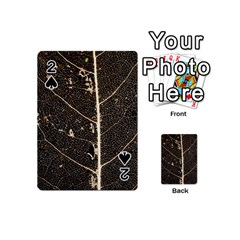 Vein Skeleton Of Leaf Playing Cards 54 (mini)  by BangZart