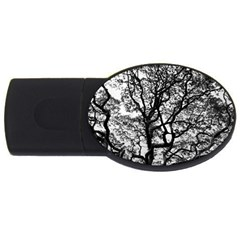 Tree Fractal Usb Flash Drive Oval (4 Gb) by BangZart
