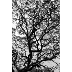 Tree Fractal 5 5  X 8 5  Notebooks by BangZart