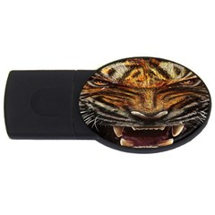 Tiger Face Usb Flash Drive Oval (4 Gb) by BangZart