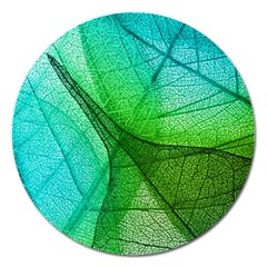 Sunlight Filtering Through Transparent Leaves Green Blue Magnet 5  (round) by BangZart