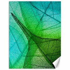 Sunlight Filtering Through Transparent Leaves Green Blue Canvas 12  X 16   by BangZart
