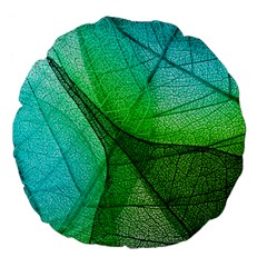 Sunlight Filtering Through Transparent Leaves Green Blue Large 18  Premium Flano Round Cushions by BangZart