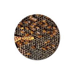 Queen Cup Honeycomb Honey Bee Rubber Coaster (round)  by BangZart