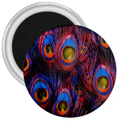 Pretty Peacock Feather 3  Magnets by BangZart