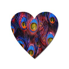 Pretty Peacock Feather Heart Magnet by BangZart