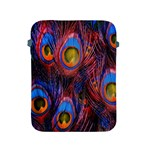 Pretty Peacock Feather Apple iPad 2/3/4 Protective Soft Cases Front