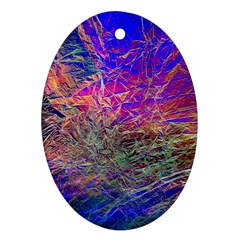 Poetic Cosmos Of The Breath Ornament (oval) by BangZart