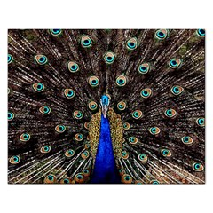 Peacock Rectangular Jigsaw Puzzl by BangZart