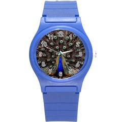 Peacock Round Plastic Sport Watch (s)