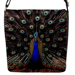 Peacock Flap Messenger Bag (s)