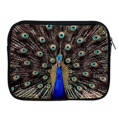 Peacock Apple Ipad 2/3/4 Zipper Cases