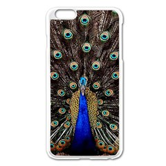Peacock Apple Iphone 6 Plus/6s Plus Enamel White Case by BangZart