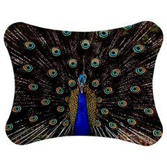 Peacock Jigsaw Puzzle Photo Stand (bow) by BangZart