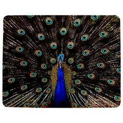 Peacock Jigsaw Puzzle Photo Stand (rectangular) by BangZart