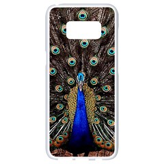Peacock Samsung Galaxy S8 White Seamless Case