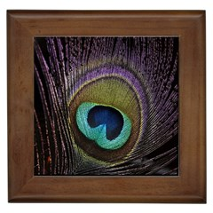 Peacock Feather Framed Tiles by BangZart