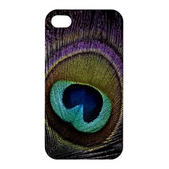 Peacock Feather Apple Iphone 4/4s Premium Hardshell Case by BangZart