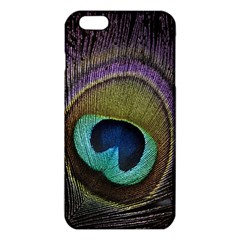 Peacock Feather Iphone 6 Plus/6s Plus Tpu Case by BangZart