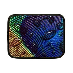 Peacock Feather Retina Mac Netbook Case (small)  by BangZart